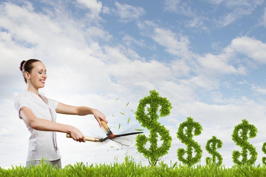 Ideias lucrativas para uma renda extra em 2020